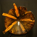 "Norfolk Pine FlowerDimensions:12"" x 1 1/2""Price: $1,250Sold"